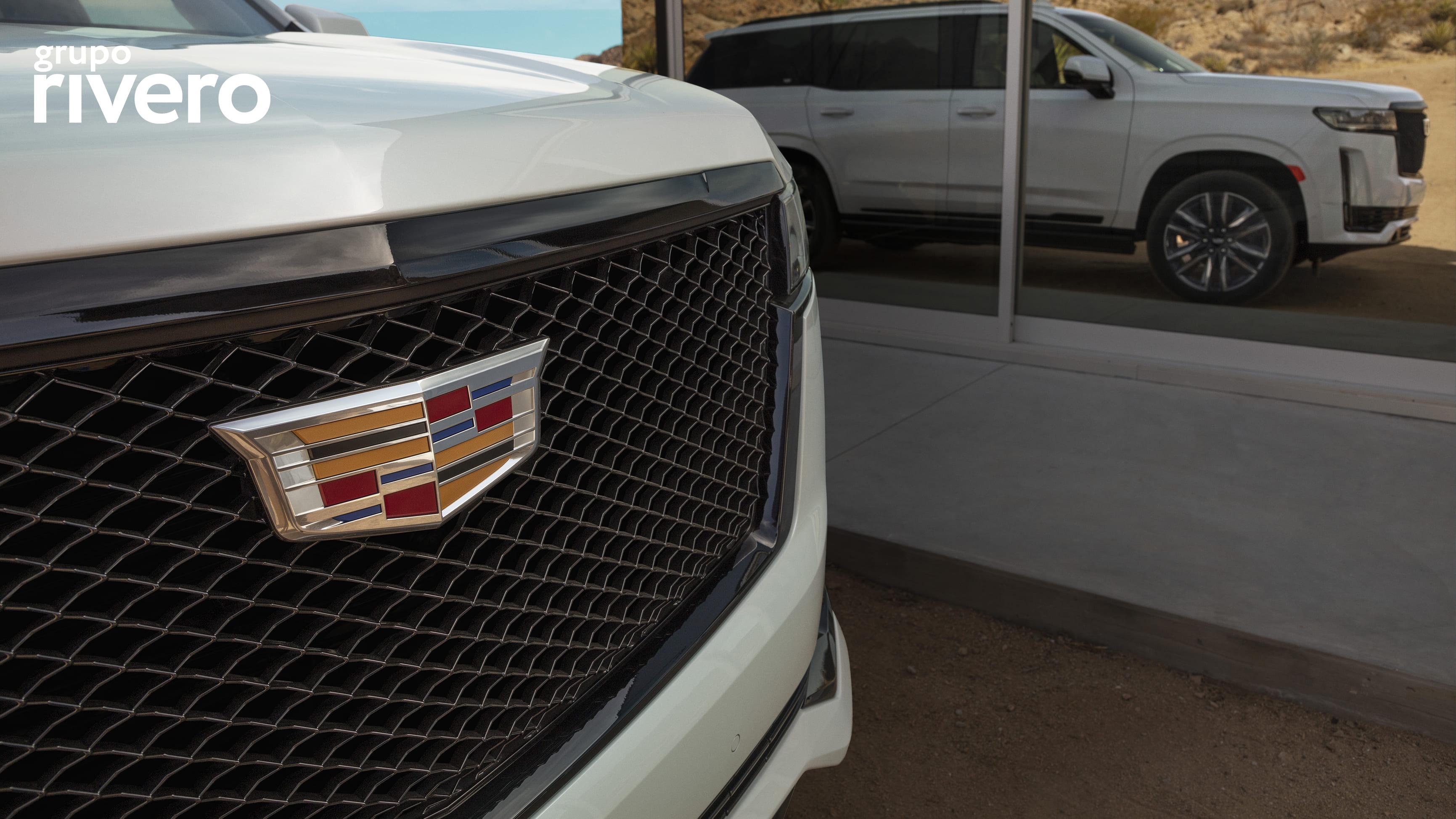 CADILLAC ESCALADE SUV 2021 galeria 13